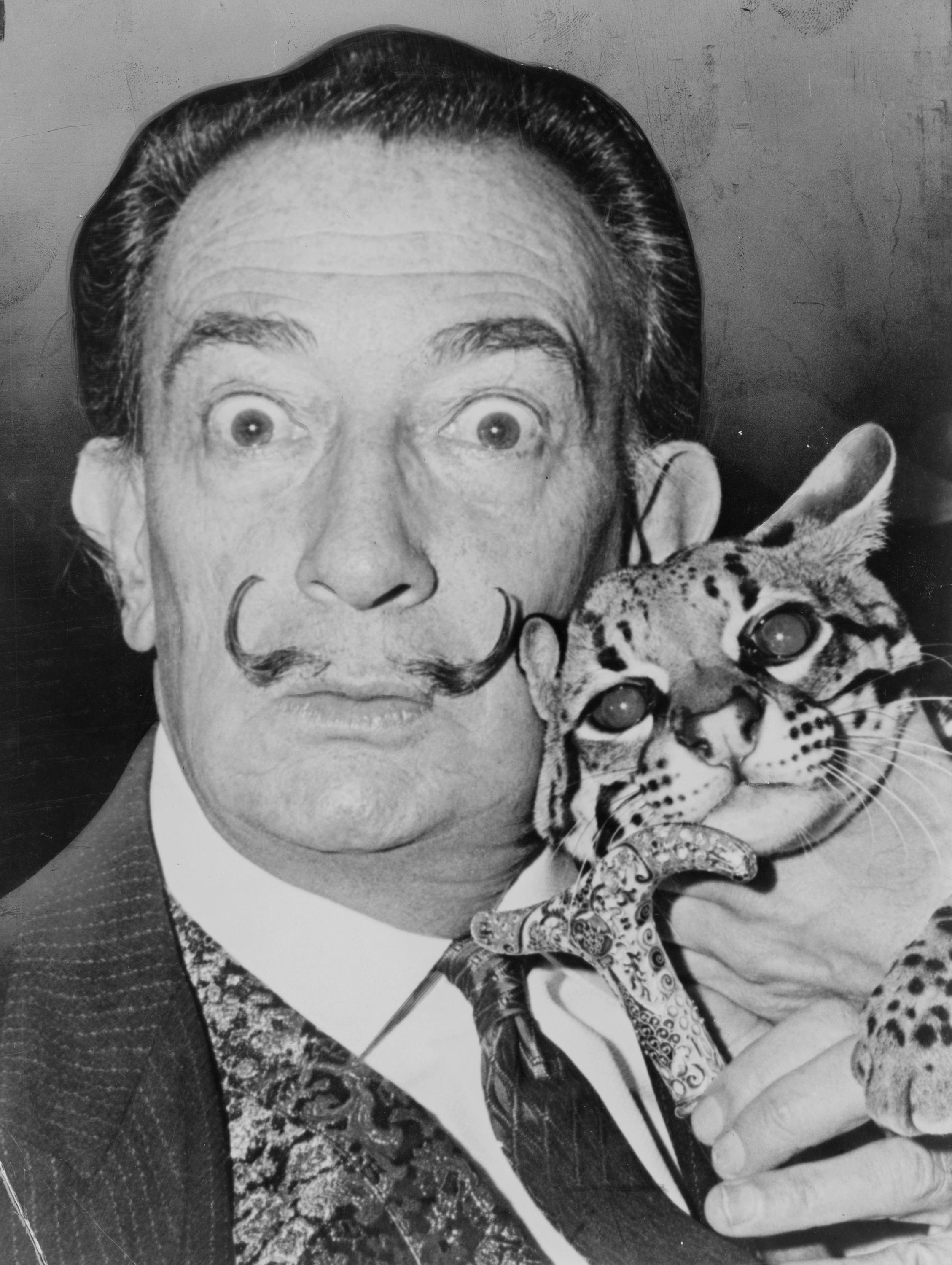 Salvador Dali Surrealistic & Self Portraits - Lessons - Tes Teach