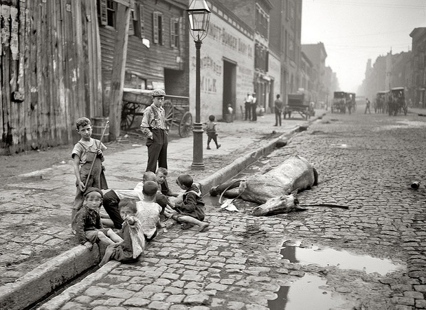children-and-dead-horse-street-in-new-york-c-1895 (1)