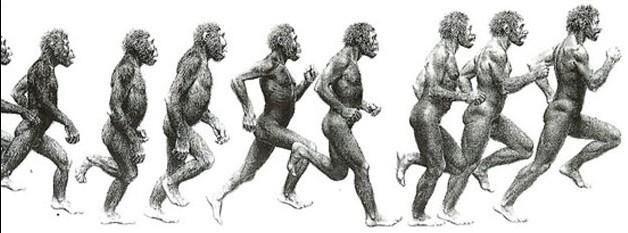 22 HumanEvolution e1449553032575 3 Videos: John McAfee (2015), Jackie Stewart (1973), Yuval Noah Harari (2015)