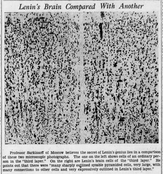 """lenin31 e1466055346404 Old Print Article: """"Russians Cut Lenin's Brain Into 15,000 Pieces To Find Secret Of His Greatness,"""" Brooklyn Daily Eagle (1929)"""