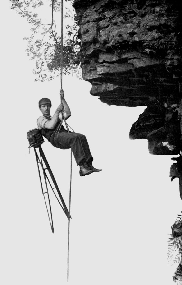 abseil Old Print Article: Cherry Kearton Photographs Penguin Island (1931)