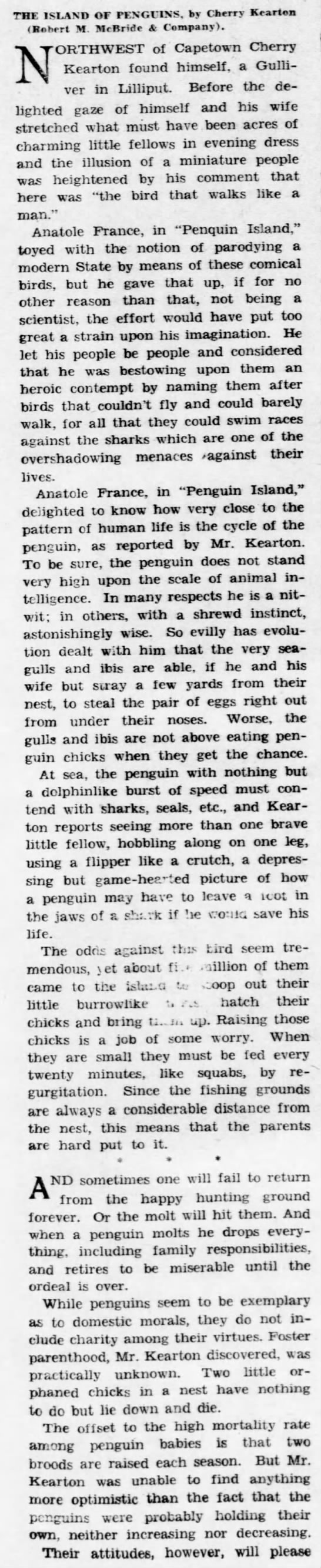 k1a Old Print Article: Cherry Kearton Photographs Penguin Island (1931)